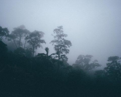 Lạc lối ở Tam Đảo - Get lost in Tam Dao